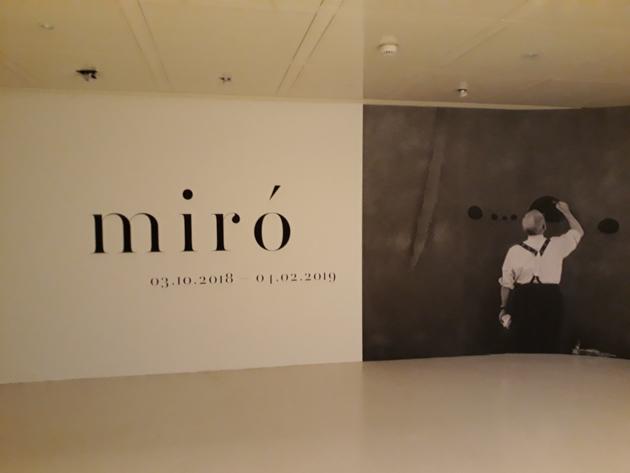 miro-site-5